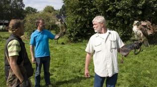 Maak écht kennis met de Roofvogels en volg een workshop !